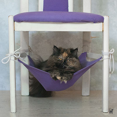 Katze Lara in selbstgenähter Hängematte unterm Stuhl