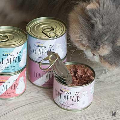 Katze riecht an geöffneter Katzenfutterdose