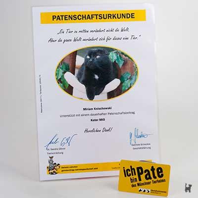 """Patenschaftsurkunde für Kater """"Mio"""" aus dem Tierheim München"""