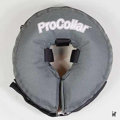 ProCollar Schutzkragen