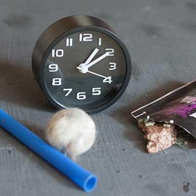 Die Uhr spielt bei uns kaum eine Rolle, wenn es um Fressen oder Spielen geht