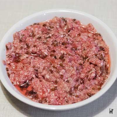 Mahlzeit mit Felini Complete im Napf