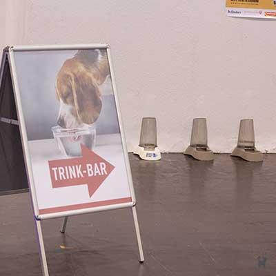 Trinkbar für Hunde
