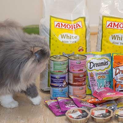 Meine Einkäufe: Katzenfutter und -streu
