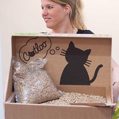 Katzentoilette auf Karton mit Holzstreu