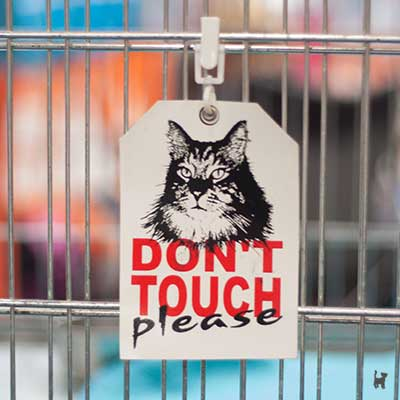 Aufhänger 'don't touch please' an einem Ausstellungskäfig