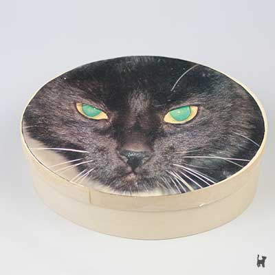 Ovale Katzenurne aus Holz