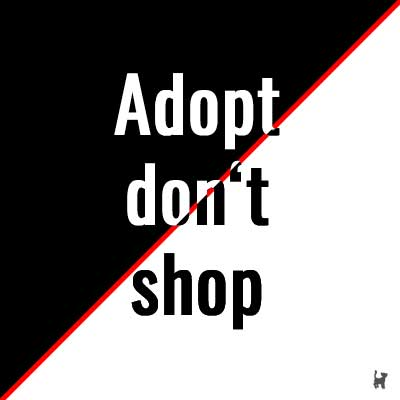 """""""Adopt don't shop"""" malt da schwarz/weiß, wo es viele Grautöne gibt"""