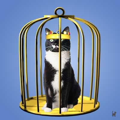 Die Krone nützt im goldenen Käfig wenig...