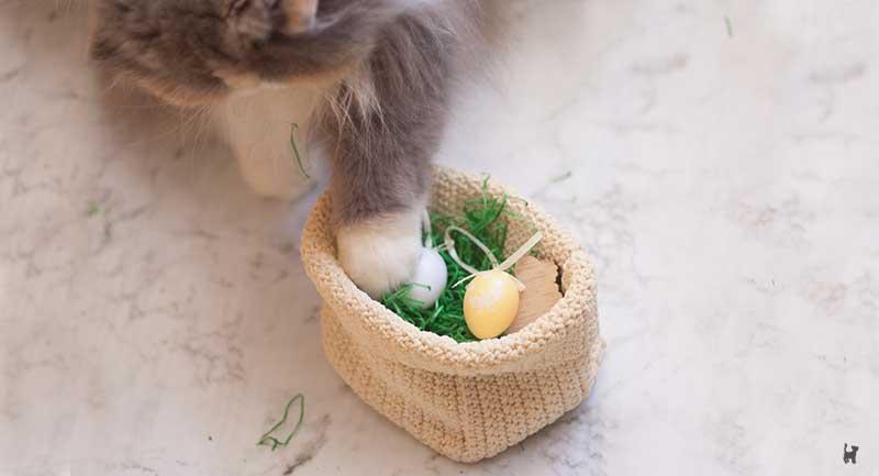 Katze spielt mit Osterdeko