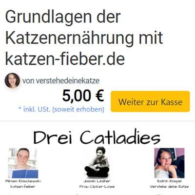 """Das Webinar """"Grundlagen der Katzenernährung"""" im Elopage-Shop"""