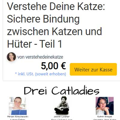"Katrins Webinar ""Sichere Bindung"" im Elopage-Shop"