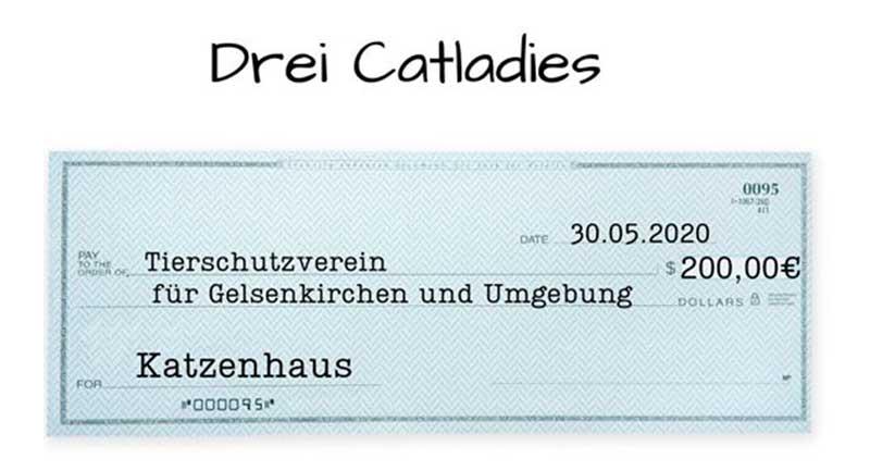 Symbolbild Spendenscheck über 200€