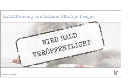 """Screenshot Webinar """"Rohfütterung von Katzen: Häufige Fragen"""""""