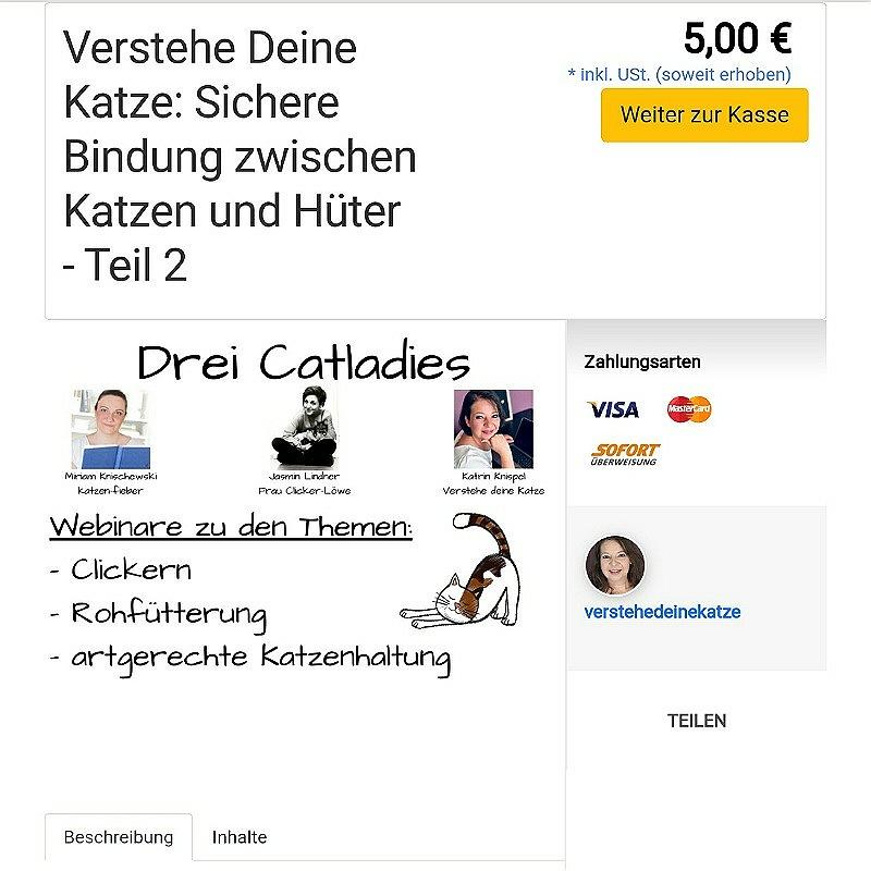 Katrins zweites Webinar im elopage-Shop
