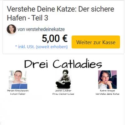 Katrins drittes Webinar im elopage-Shop