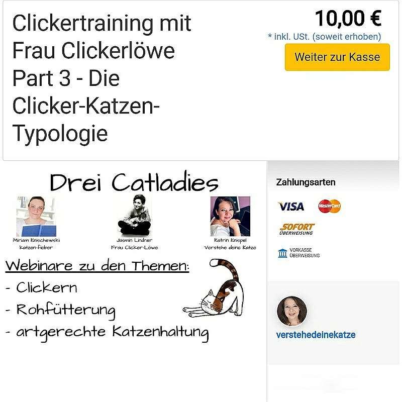 """Jasmins Webinar """"Die Clicker-Katzen-Typologie"""" im elopage-Shop"""