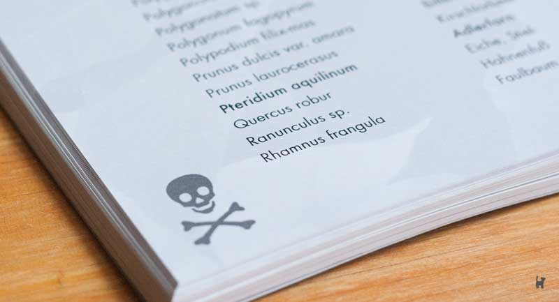 Totenkopfgrafik im Fußbereich der Giftpflanzenliste