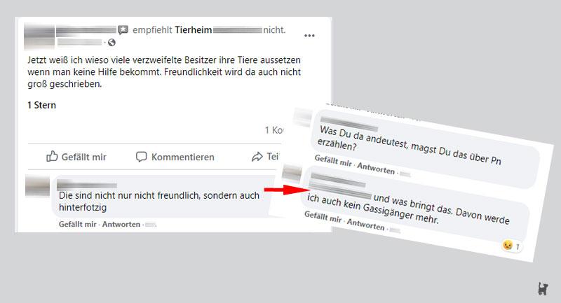 Screenshot beleidigende Kritik an Tierheim