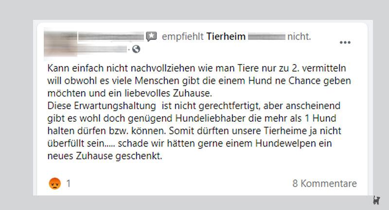 Screenshot Kritik an Tierheim