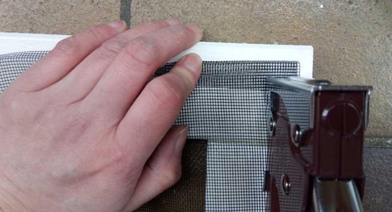 Fliegengitter wird mit Handtacker auf Holzleiste getacktert
